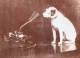 Doc : His Masters Voice - Nipper
